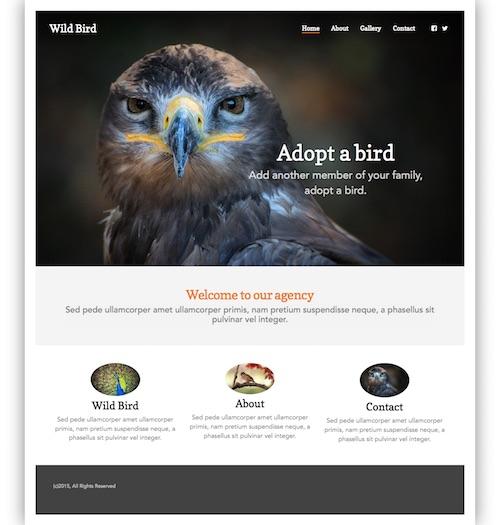 Wid Bird